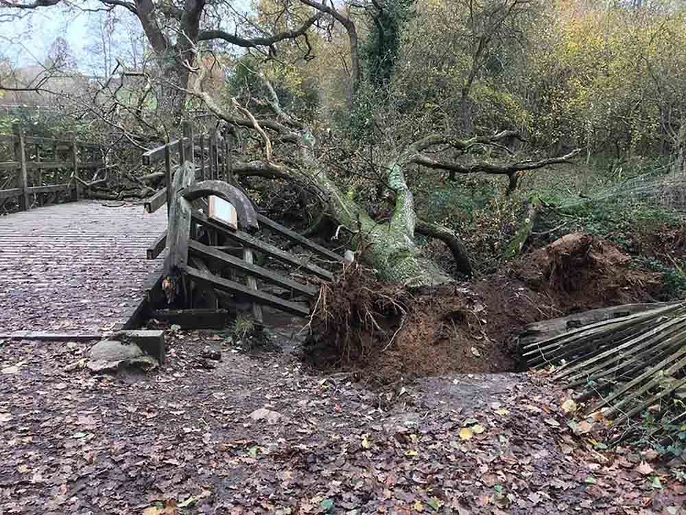 "HEARTBREAKING images show how the iconic bridge from the Winnie-the-Pooh books has been ""closed indefinitely"" after being demolished by a fallen tree - Nature News Scotland/UK"