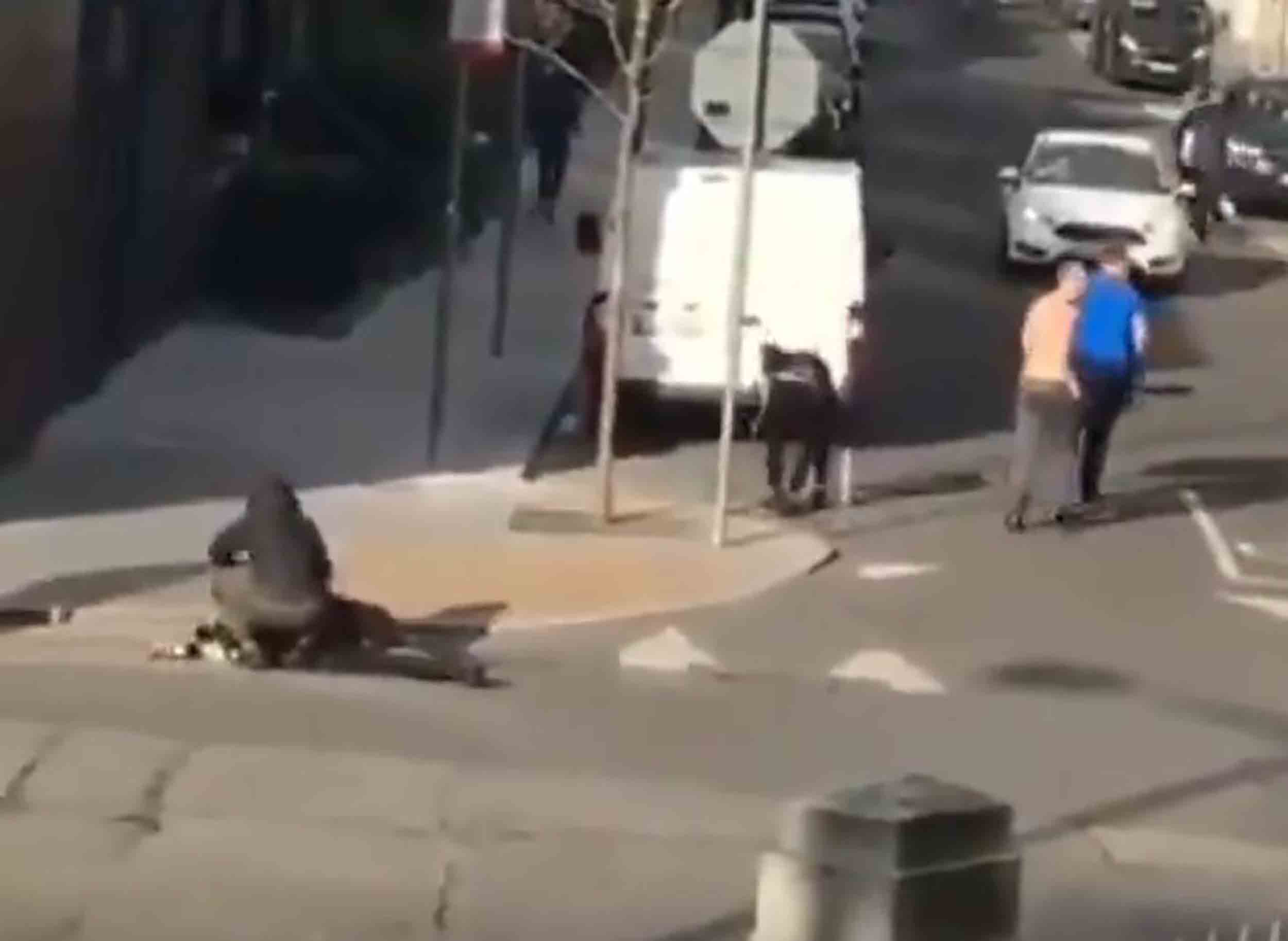 A man lying injured after crawling away from the violence - Crime News