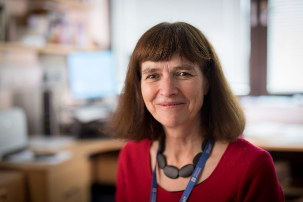 Professor Annie Anderson. - Health News Scotland