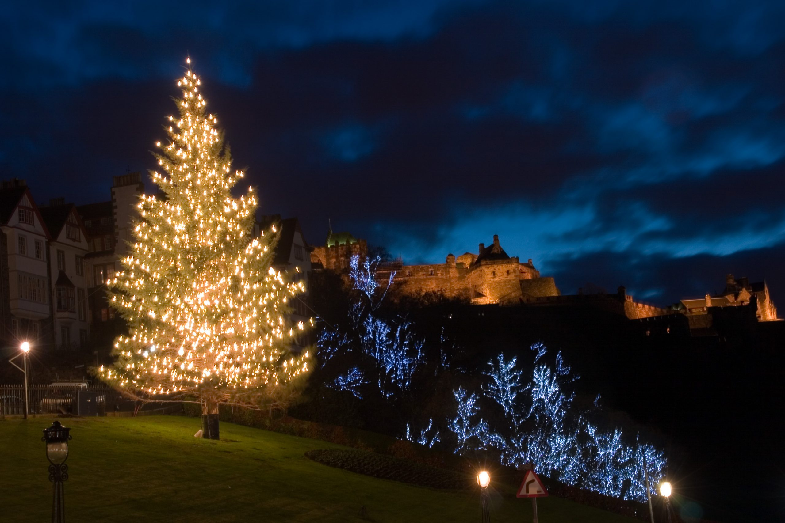 Christmas tree at the mound