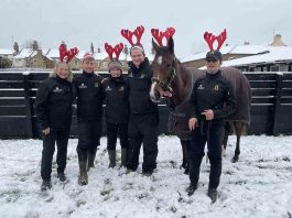 Racehorse ownership to be auctioned of to help charity - Business News UK