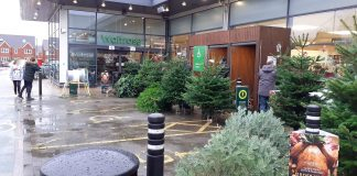 Christmas trees block disabled bays - Consumer News UK