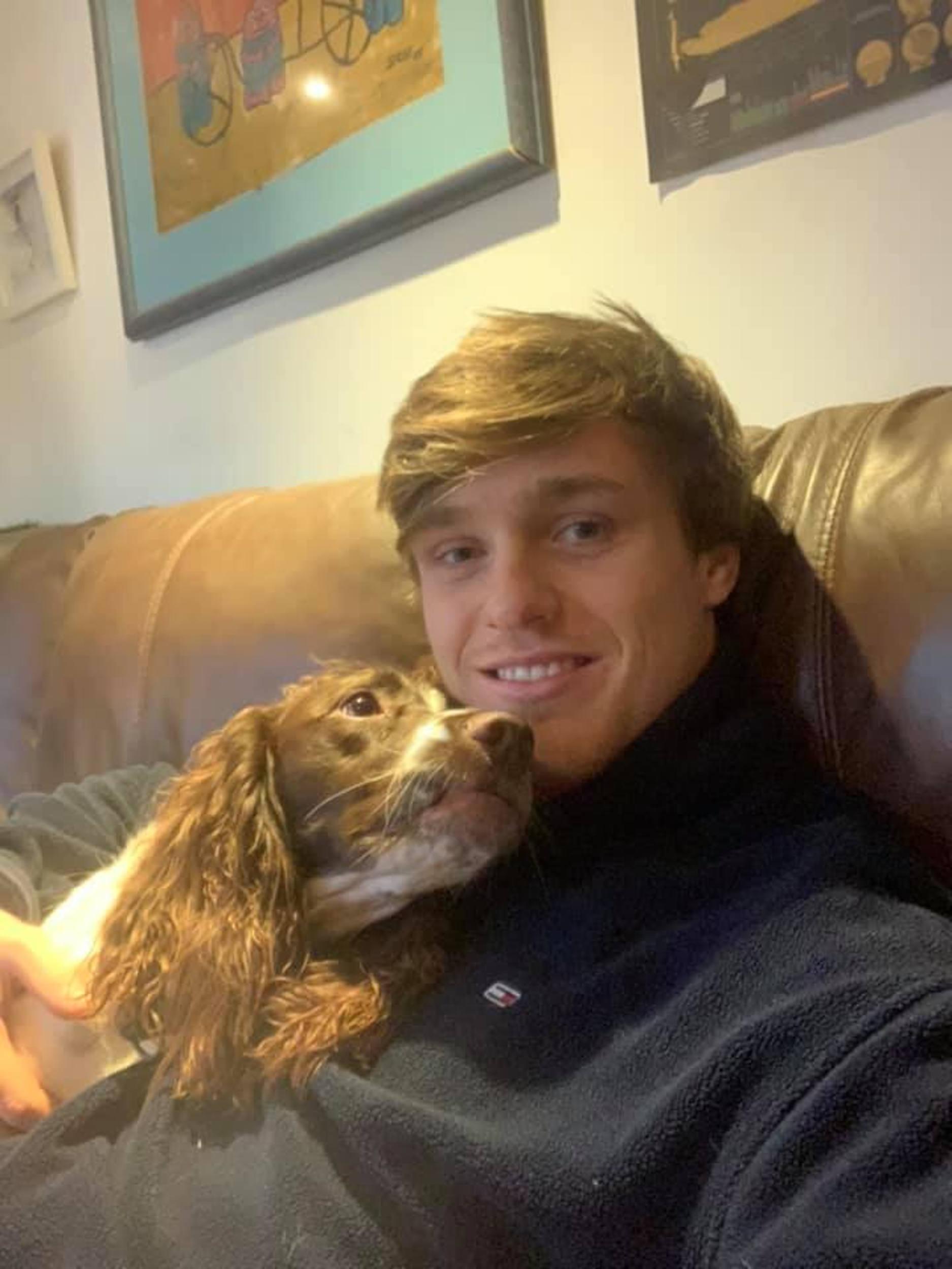 Dog saved by CPR - Animal News