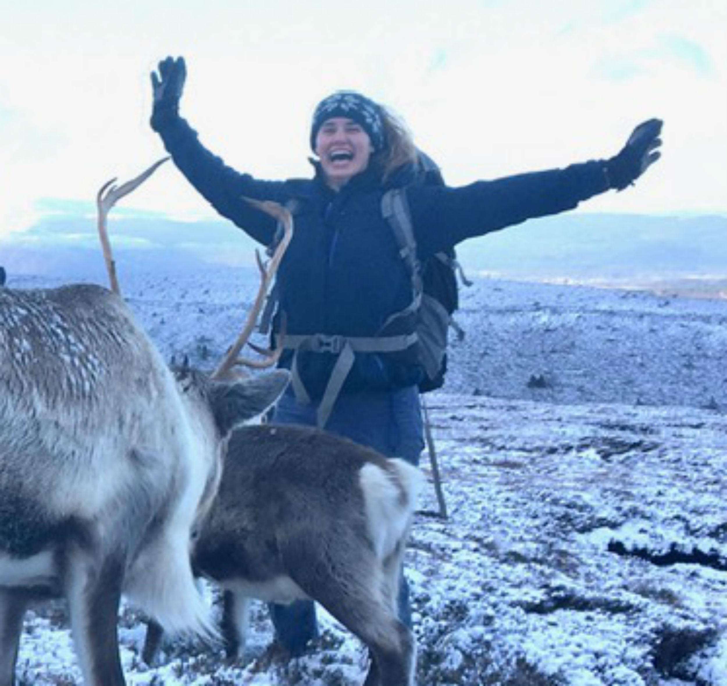 Reindeer herd Lotti Brooks - Scottish News