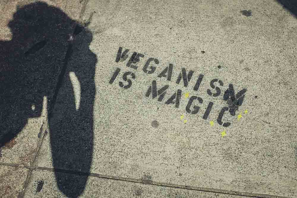 Veganuary set to be huge after celebrity backing - Health News
