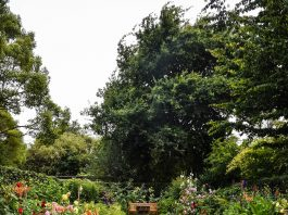 A picture of a garden with a bench in it - Property News UK