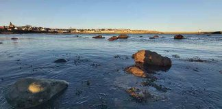 New study improves marine climate change evidence base - Science News
