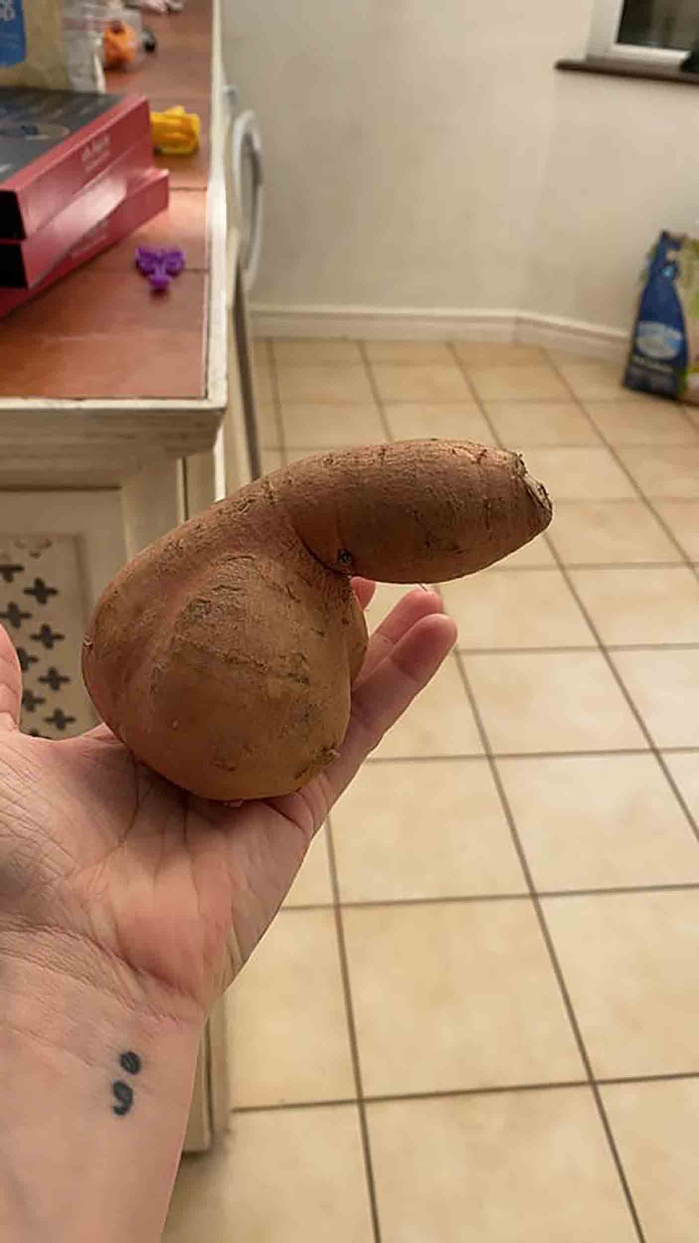 "Security guard shocked after finding ""realistic"" willy-shaped sweet potato - Consumer News UK"