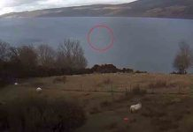Nessie spotted on Loch Ness - Scottish News
