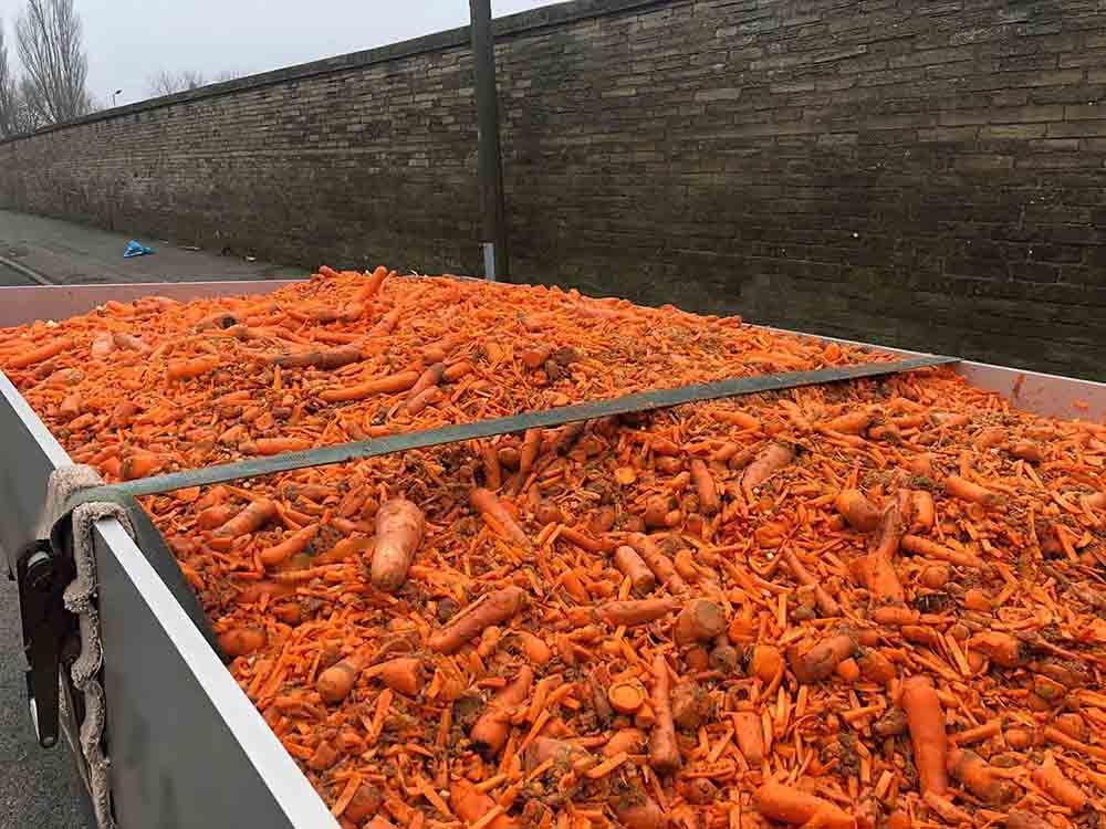 Police fine driver after discovering huge amount of carrots - Police News UK