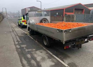 Police fine driver after discovering huge amount of carrots - Police News UK