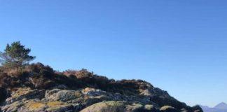 Deer swimming near Skye | Scottish News