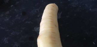 The oddly shaped parsnip | Consumer News UK