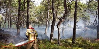 Eilean Eachainn-Loch Maree Island Fire - Scottish News