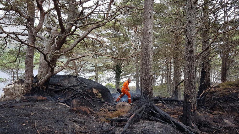 Eilean Eachainn-Loch Maree Island Fire 2021 _JPEG Image Height 720px_m234104 (1)