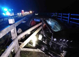 Images show horrifying crash that lucky driver managed to escape - Police News UK