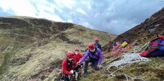 Mountain Rescue Team save springer spaniel puppy Louis who fell down waterfall - Scottish News
