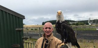 Fire and Rescue Services Animal Rescue | Scottish News