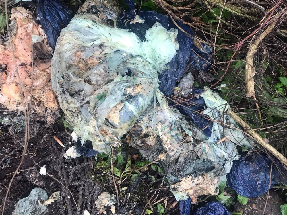 The bags that were found dumped in a field - Animal News Scotland