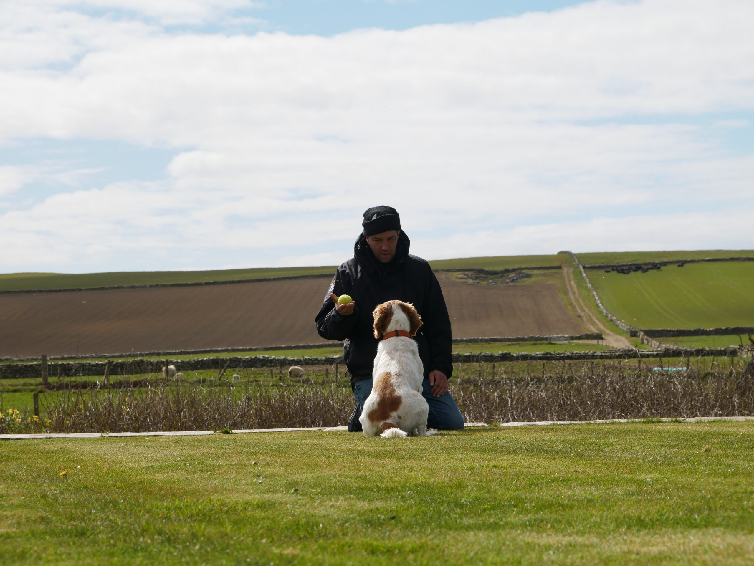 Alan and Scout copyright Orkney Native Wildlife Project - Nature News Scotland