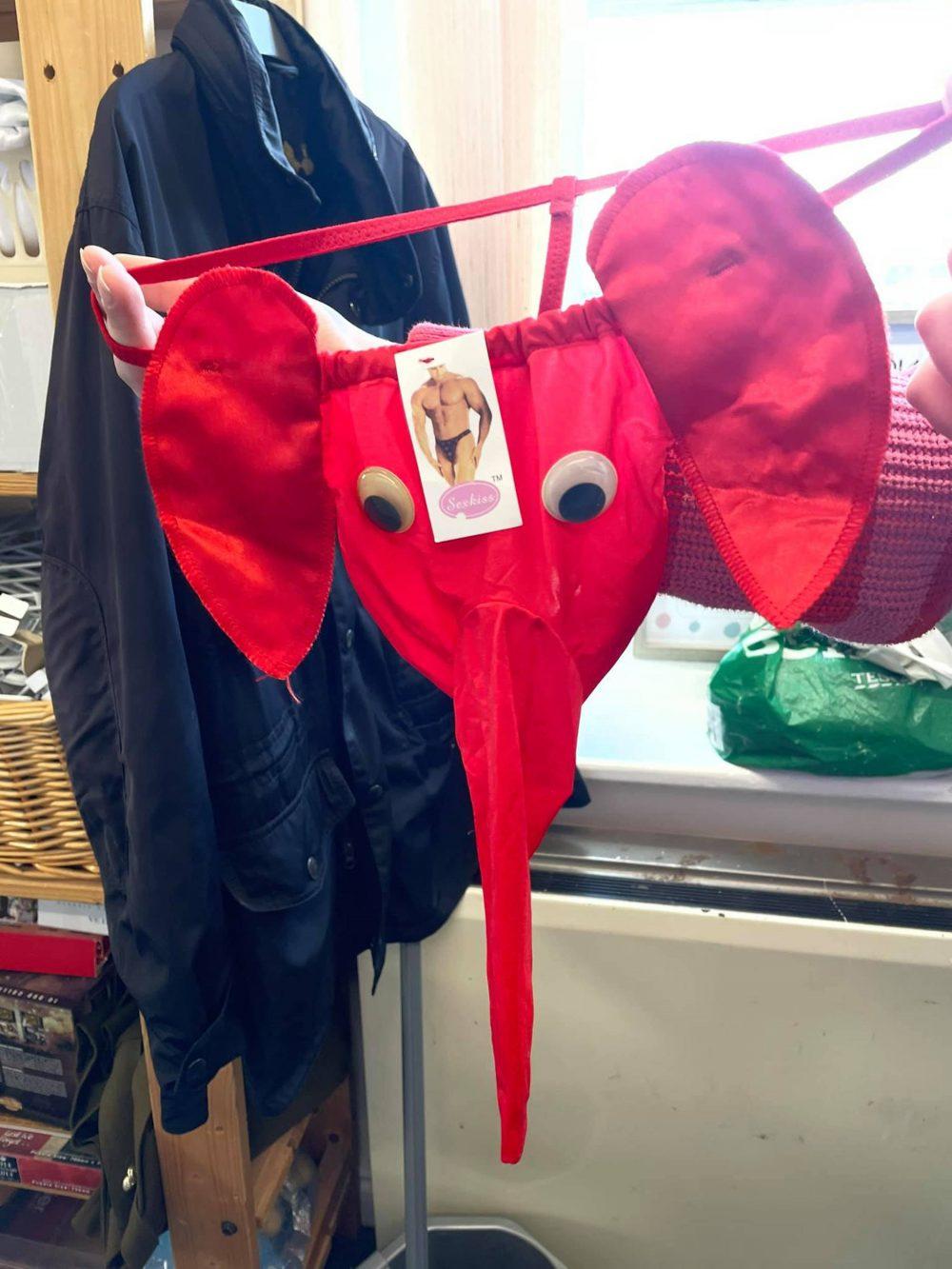 Men's elephant head G-string   Consumer News UK