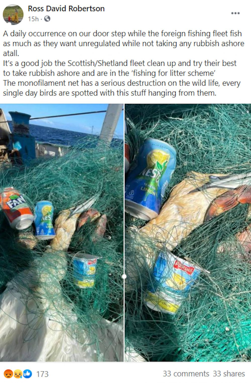 Ross Robertson Facebook Post   Scottish Wildlife News