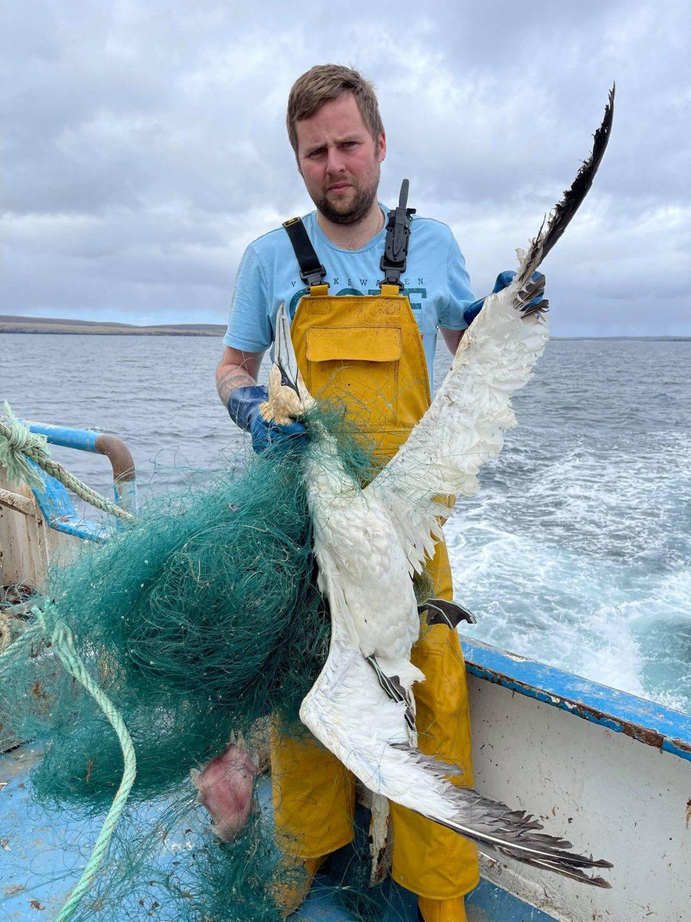 Ross holding the dead gannet   Scottish Wildlife News