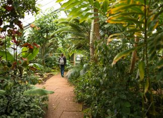 Botanic Gardens - Nature News Scotland