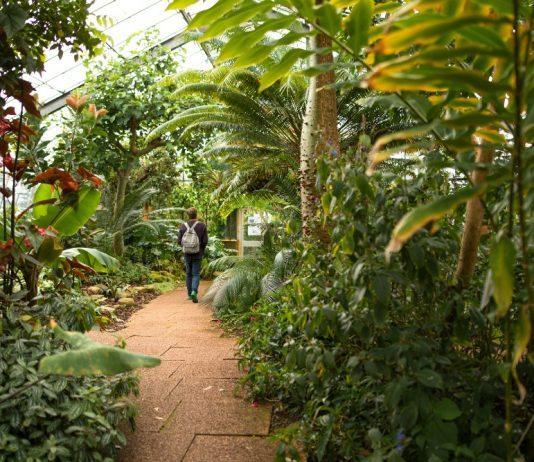 Botanic Gardens - Nature News Scotland