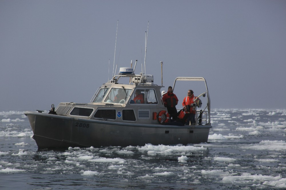 Fishing - Nature News Scotland