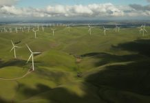 eco friendly - Property and Constructions News Scotland