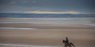 St-Andrews-beach-horse-rider