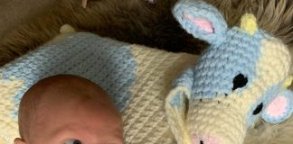 Baby Frederick with a knitted cow   Agriculture News UK