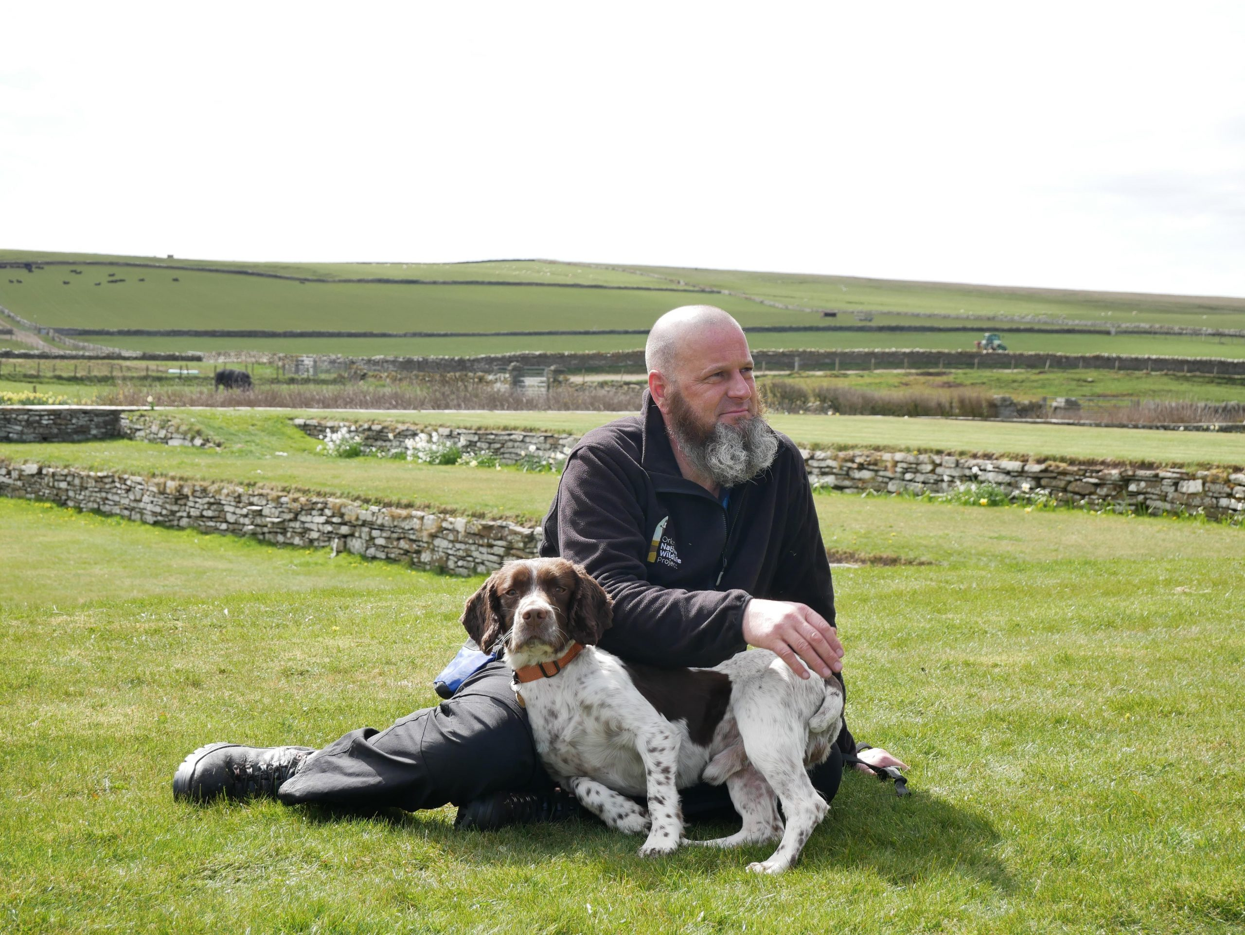 Grant and thorn Orkney Native Wildlife Project - Nature News Scotland