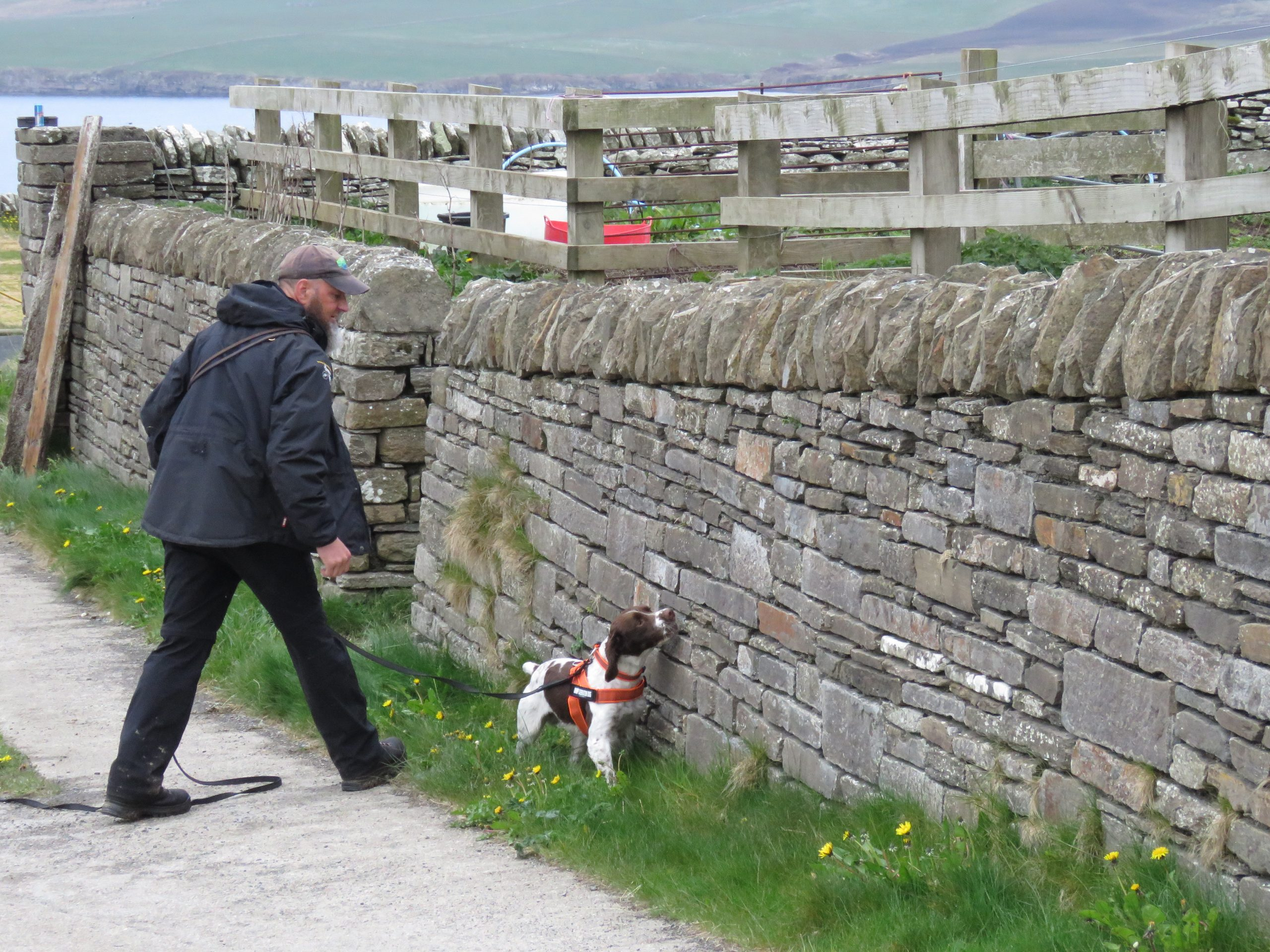 Grant thorn Rachel Cripps - Nature News Scotland