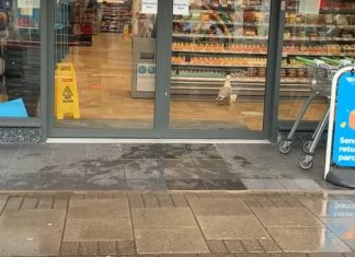 Gus entering the shop to seek out his lunch| Viral Video News