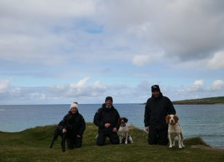 The handlers and dogs Orkney Native Wildlife Project - Nature News Scotland