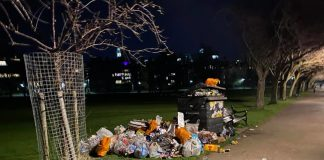 full bins in the meadows after many people littered| Environment News
