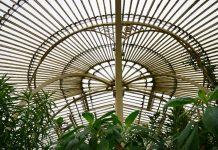 Botanic garden - Nature News Scotland