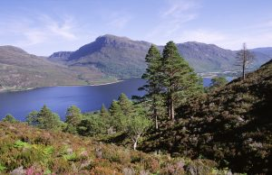 The Beinn Eighe National Reserve, which is celebrating its 70th anniversary in the autumn. - Scottish News