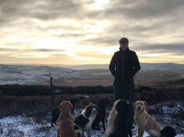 The Yorkshire gamekeeper came to the rare chicks rescue - Animal News UK