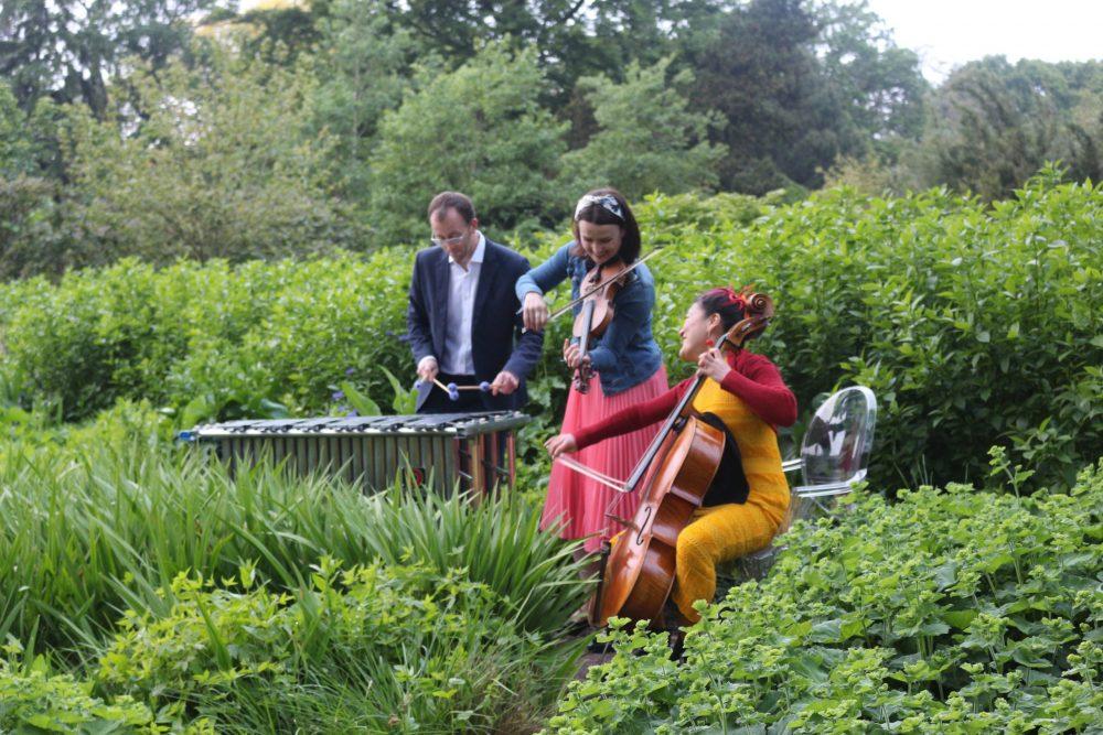 musicians in botanic gardens   Scottish News