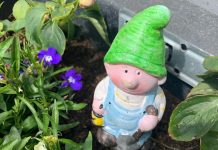 The kidnapped gnome currently has no name - Scottish News