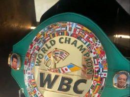 Josh Taylor's home belt display   Scottish News
