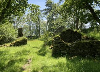Ruin at Old Village of Lawers- Property News Scotland