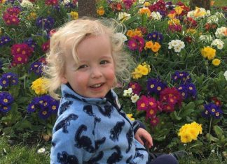 Xander Scott who tragically died | Scottish News