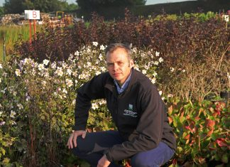 plants - Scottish News