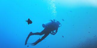 deep sea diver- Scottish News