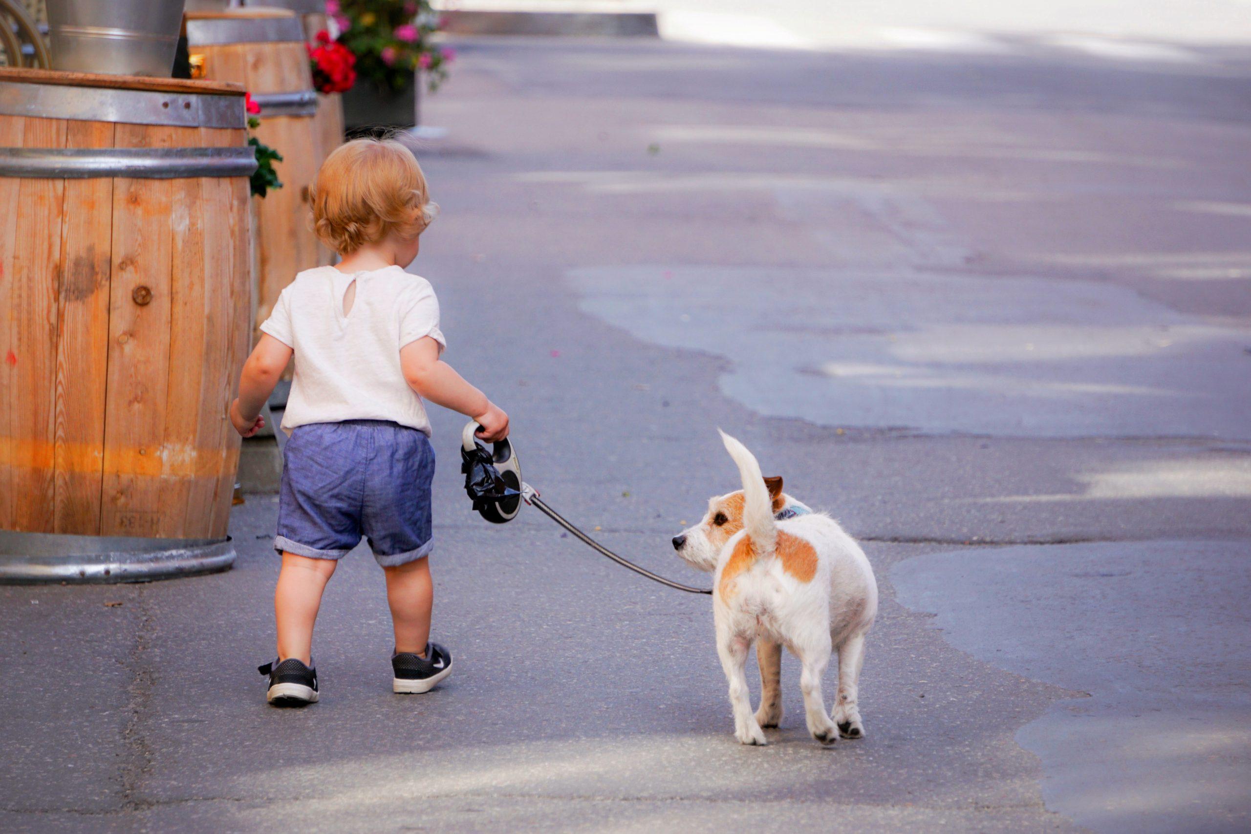 Dog - Health News Scotland