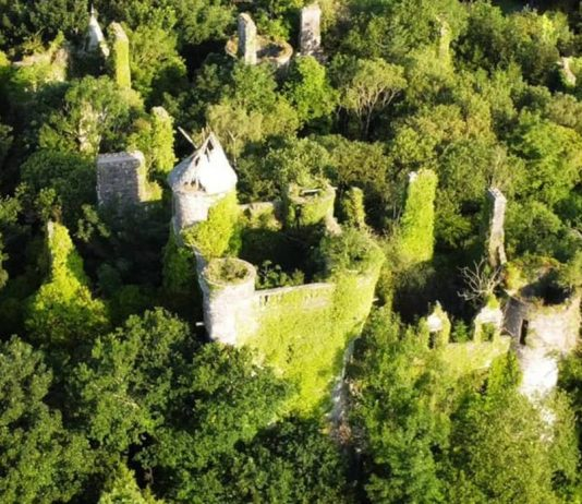 Over grown Buchanan Castle   Scottish News